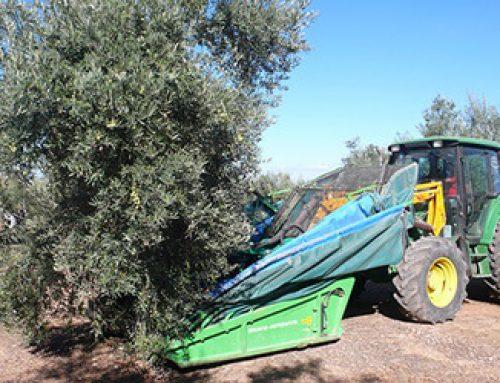 Carnet de Manipulador de Alimentos en Jaén