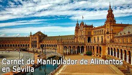 Carnet de Manipulador de Alimentos Sevilla