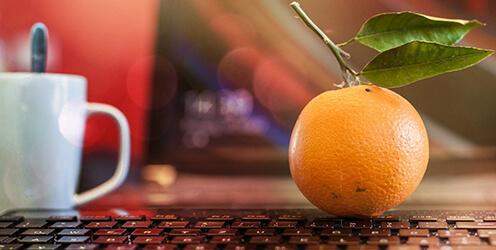 Curso Manipulador de Alimentos para Desempleados